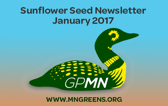 Sunflower-Seed-2017-01.jpg