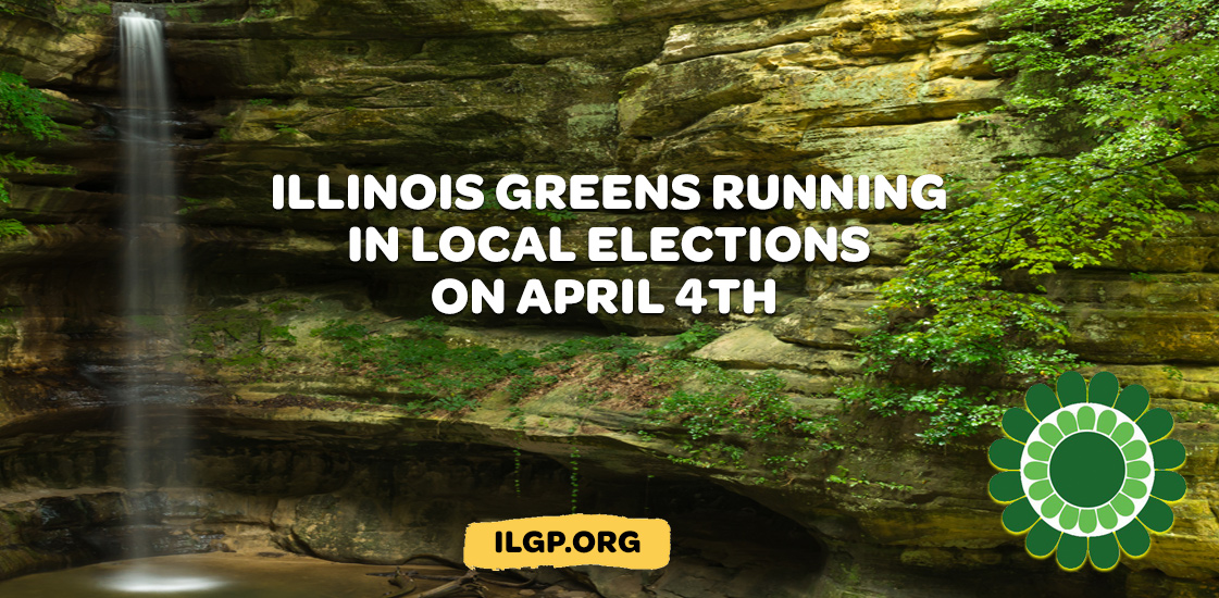 Illinois-spring-elections.jpg
