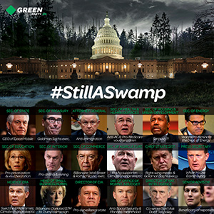 GPUS_m_Still-A-Swamp_2017.jpg
