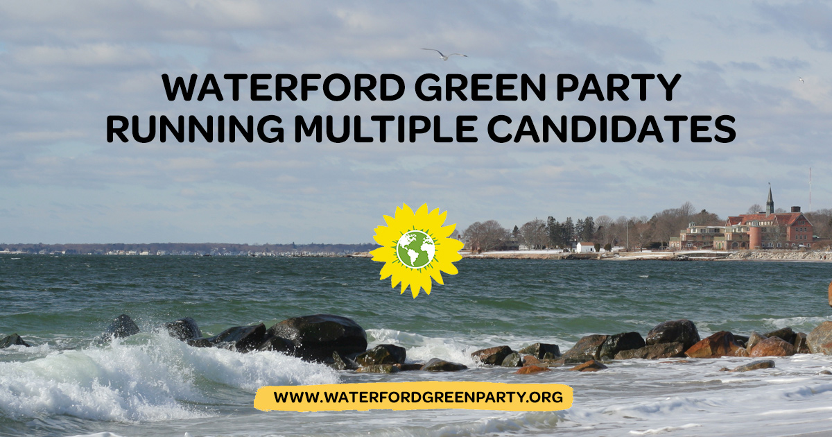 Waterford-2017-candidates.jpg