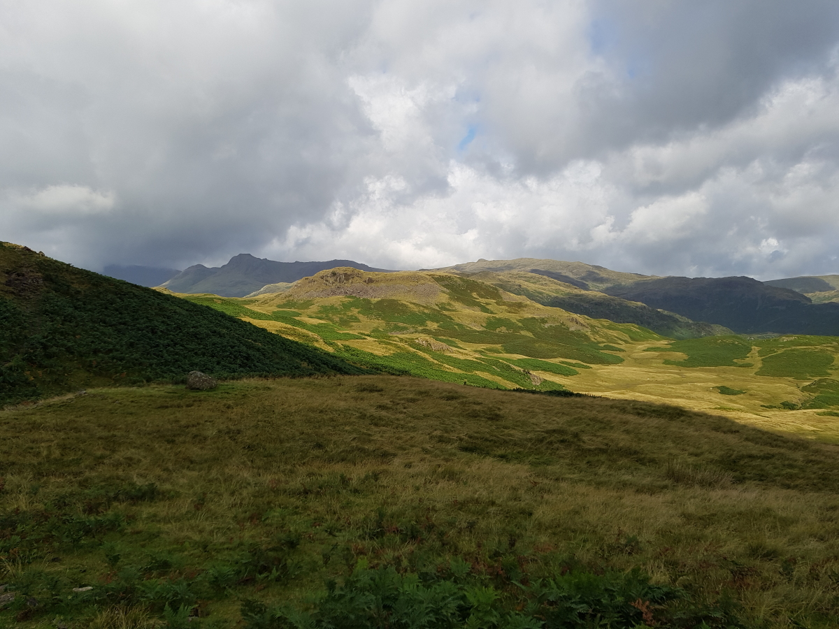 The Langdale Pikes from Silver How