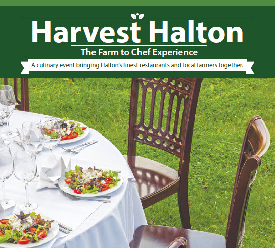 Harvest-Halton.jpg