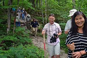 Photo - Participants of the June 23 hike of the Bruce Peninsula, in the woods hiking through lush deciduous vegetation. Trail of hikers cuts from center of photo to bottom right corner.