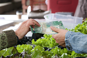 Photo - Money is transferred between two hands at a local farmers' market.