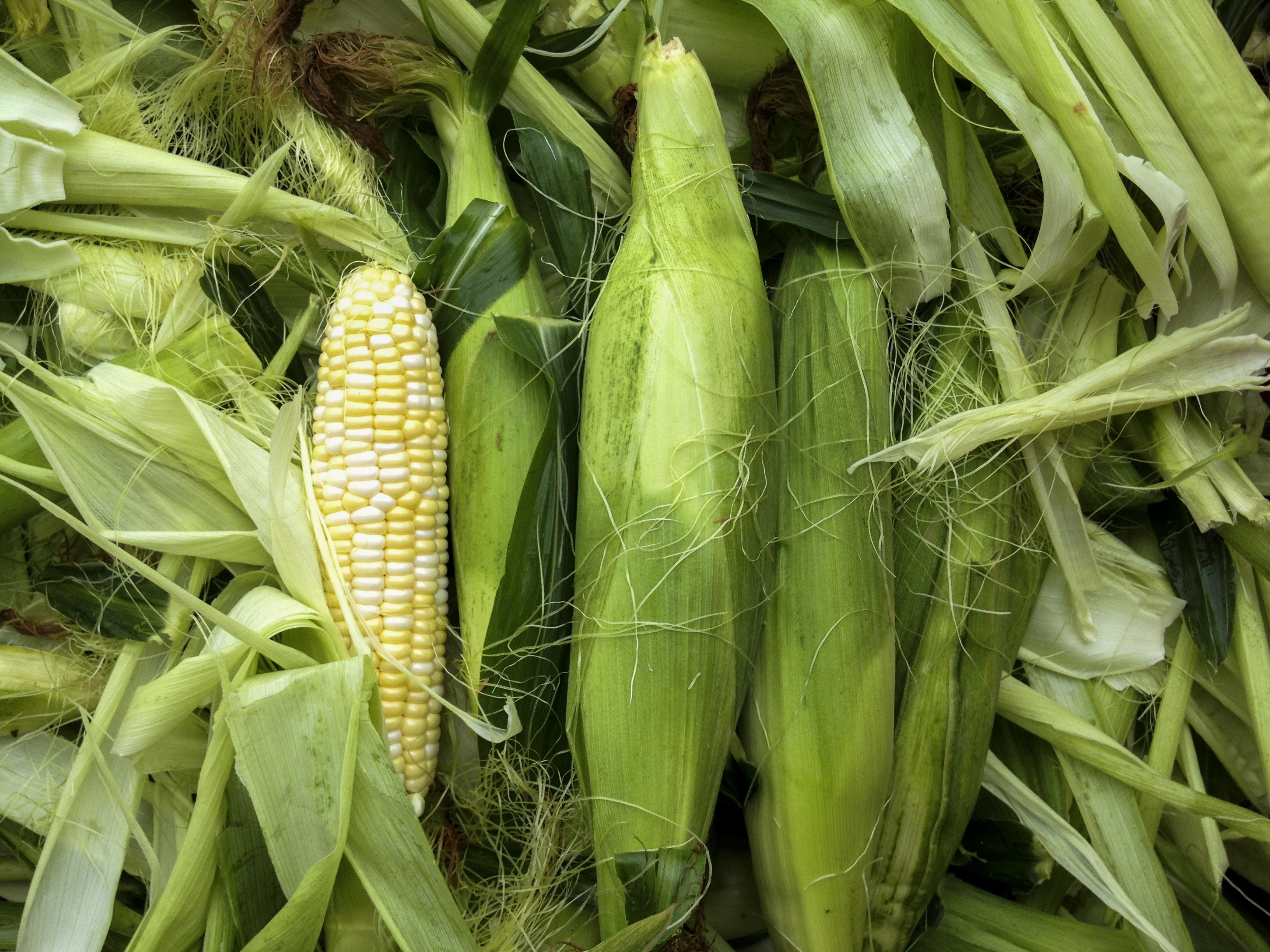 2012-07-27_Reesor_Farm_Fruit_002.jpg