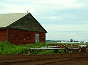 Photo - A barn