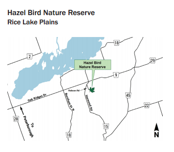 Hazel_Bird_Natural_Reserve.png