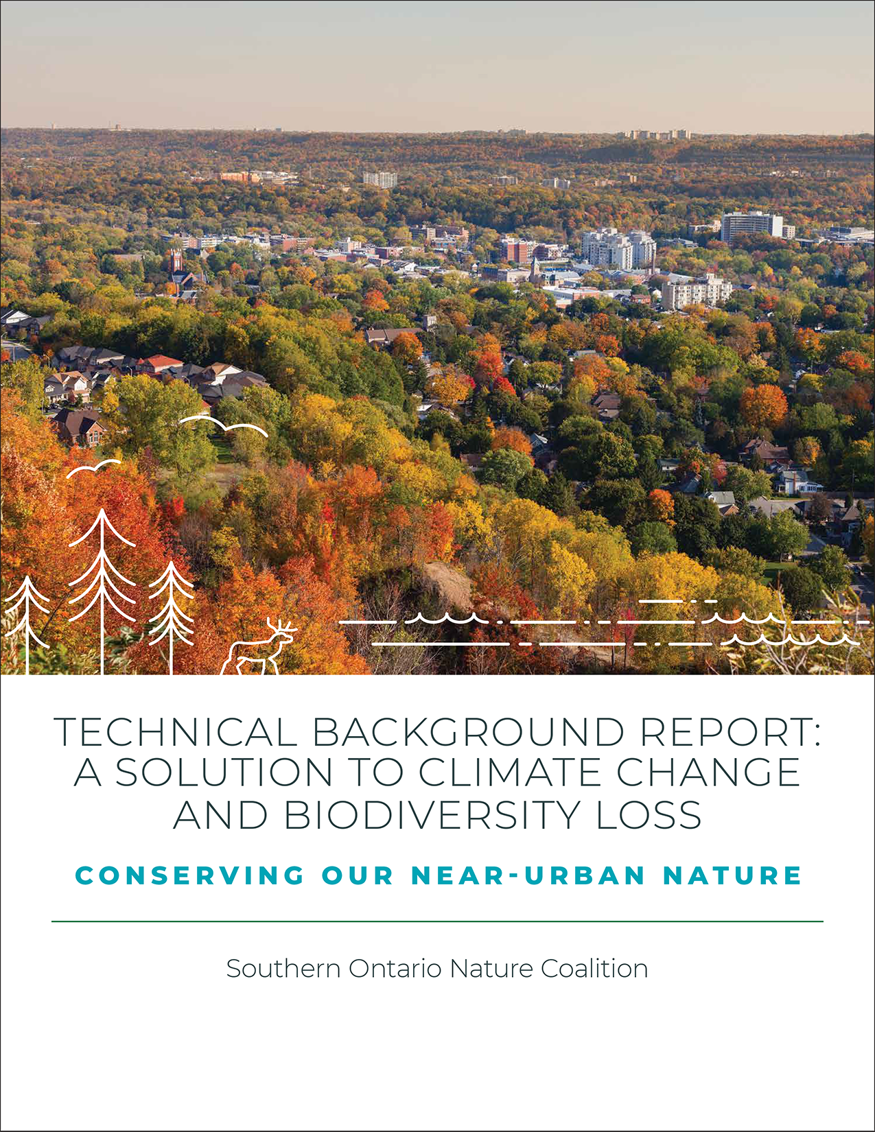TECHNICAL BACKGROUND REPORT: A SOLUTION TO CLIMATE CHANGE AND BIODIVERSITY LOSS