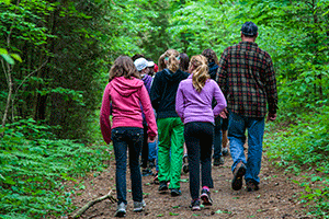 Photo - Group going for walk in woods