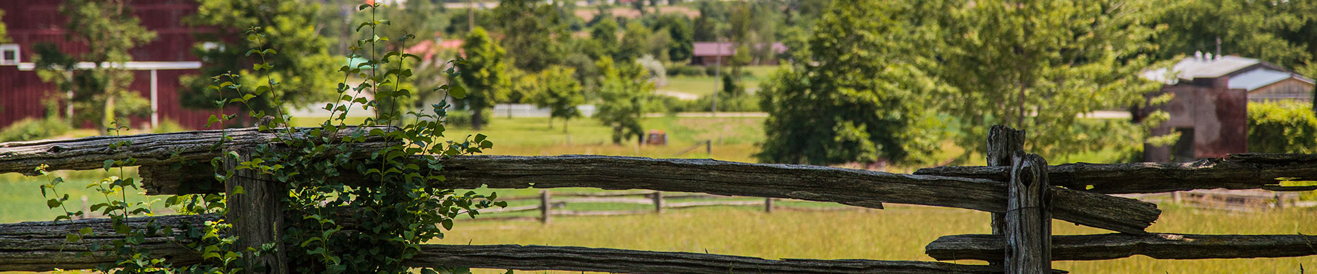 Photo-Farm-Fence-View-2014-06-26-Country-Heritage-Park-056.jpg