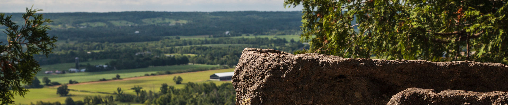 Photo-View-Cliff-2014-08-13-Rattlesnake-Point-Conservation-Area-009.jpg