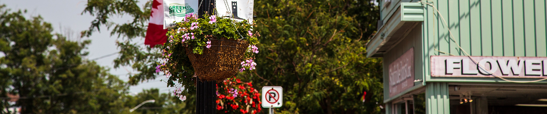 Photo-MainSt-Flowers-2012-07-06-Whitchurch-Stoufville-014.jpg