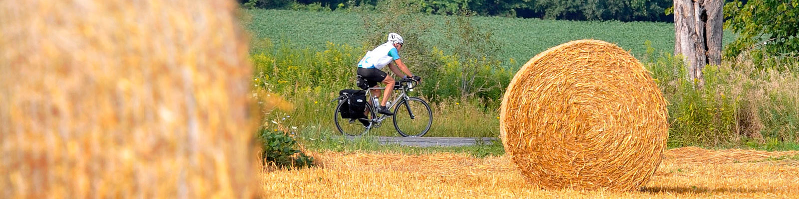 Photo-Cyclist_Hay_Bale-2015-08-18_Great_Waterfront_Trail_Adventure_2015_Greenbelt_Route_Special_Edition_c_Simon_Wilson_230.jpg