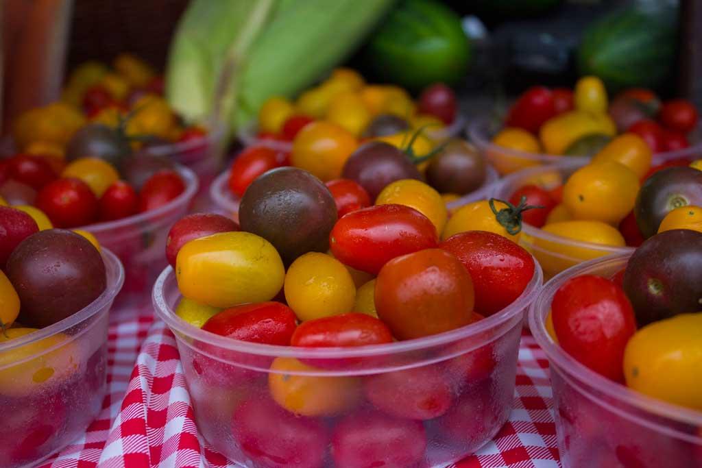 Greenbelt-Harvest-Picnic_for-web.jpg