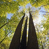 update on oak ridges moraine