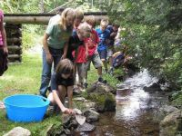 Atlantic Salmon Classroom Hatchery Program