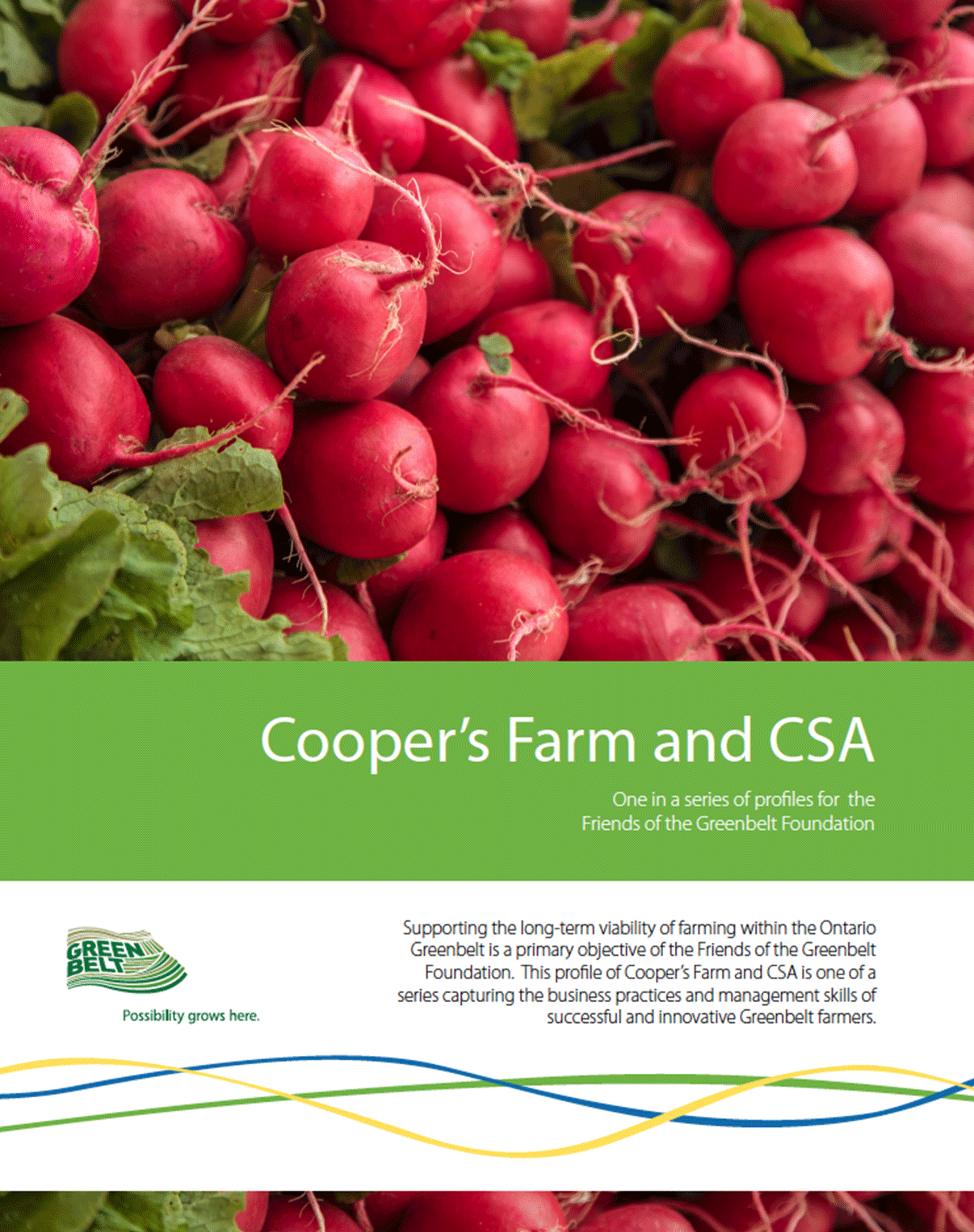 Coppersfarm-cover-2.png