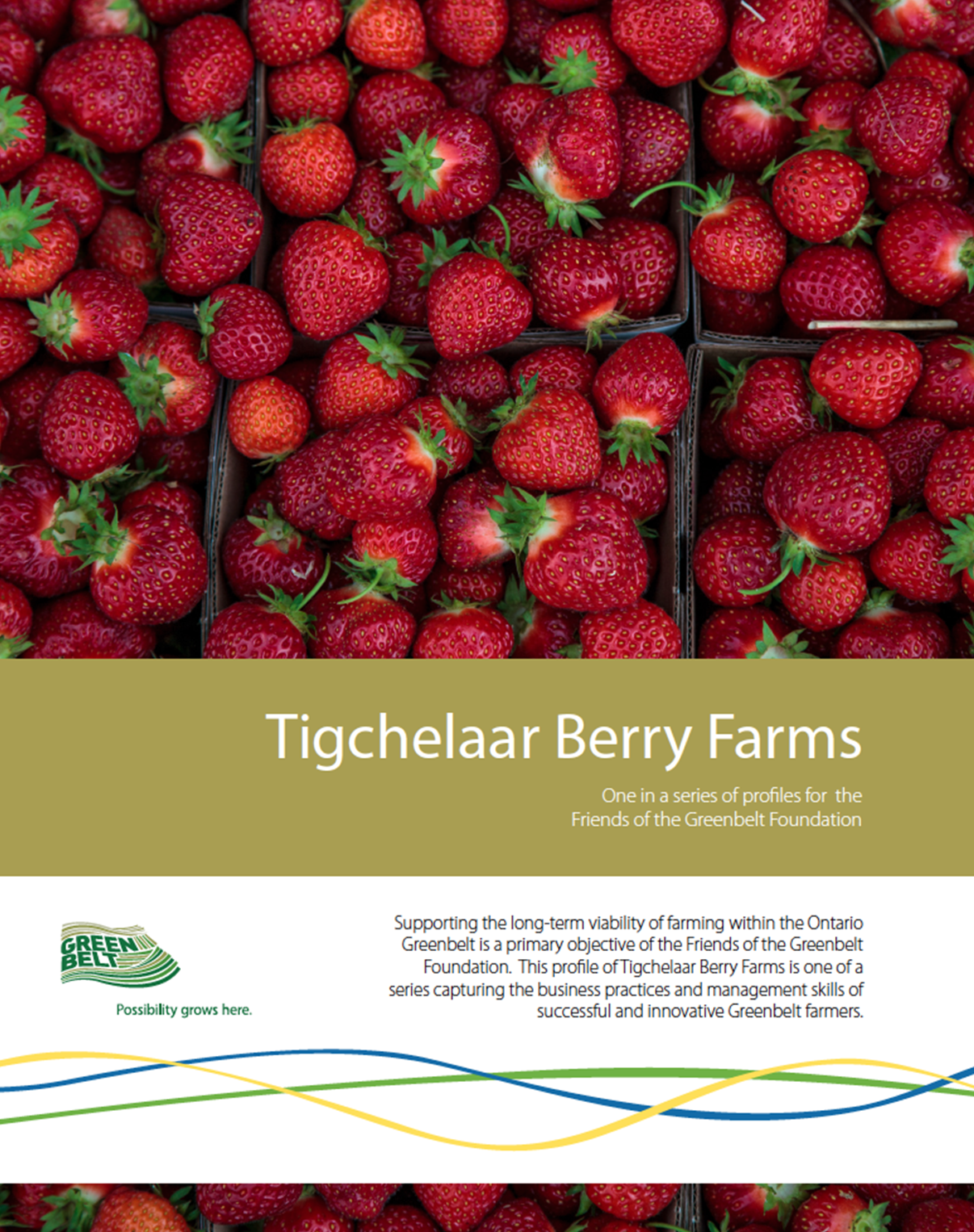 Tigchelaat-Berry-Farms-Cover.png
