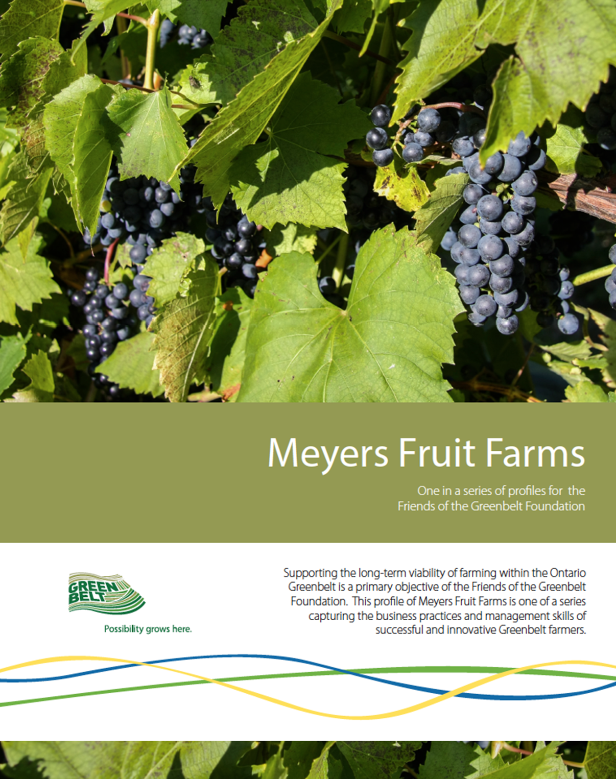 Meyers-Fruit-Farms.png