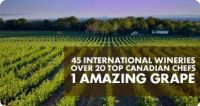 International Cool Climate Chardonnay Event