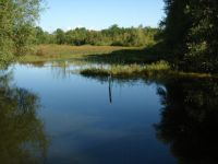Wetland Restoration Incentive Program