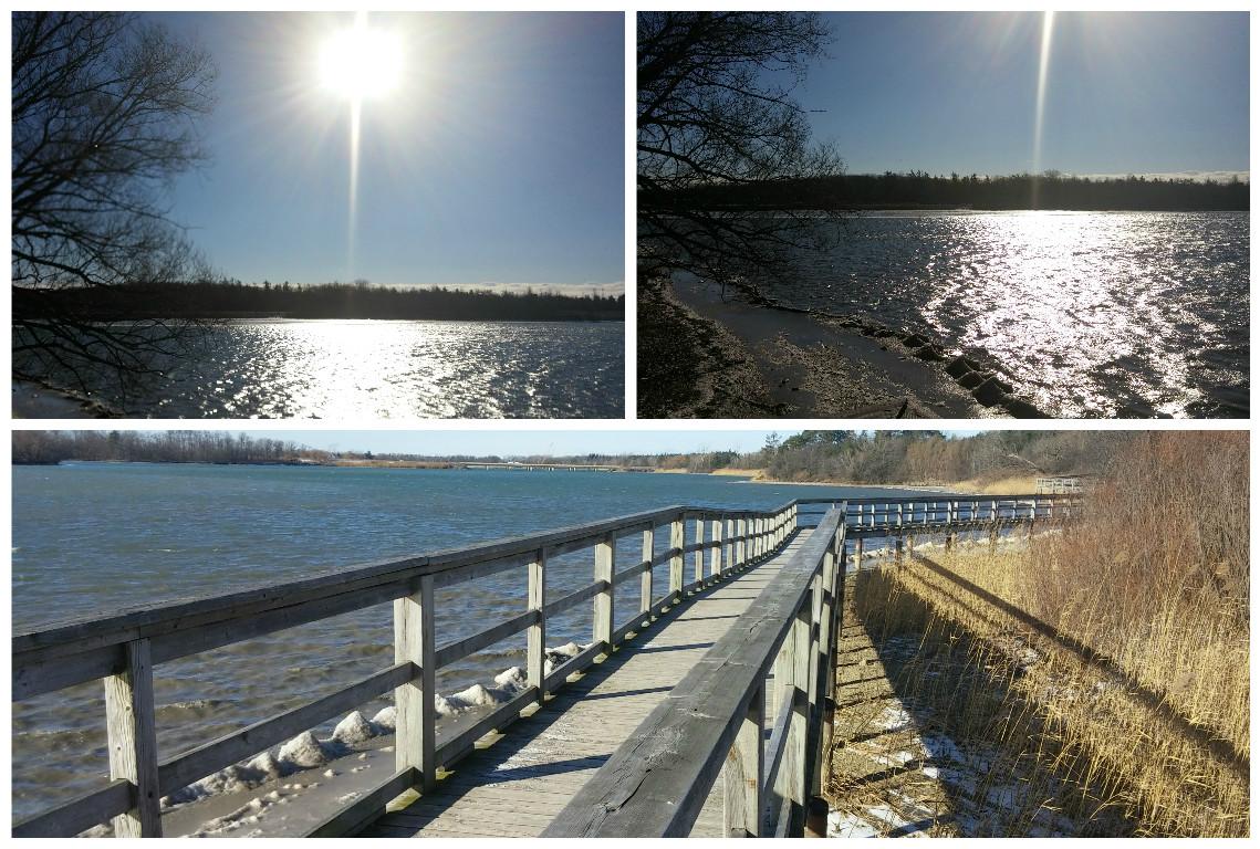 Lake_Gibson_1.jpg