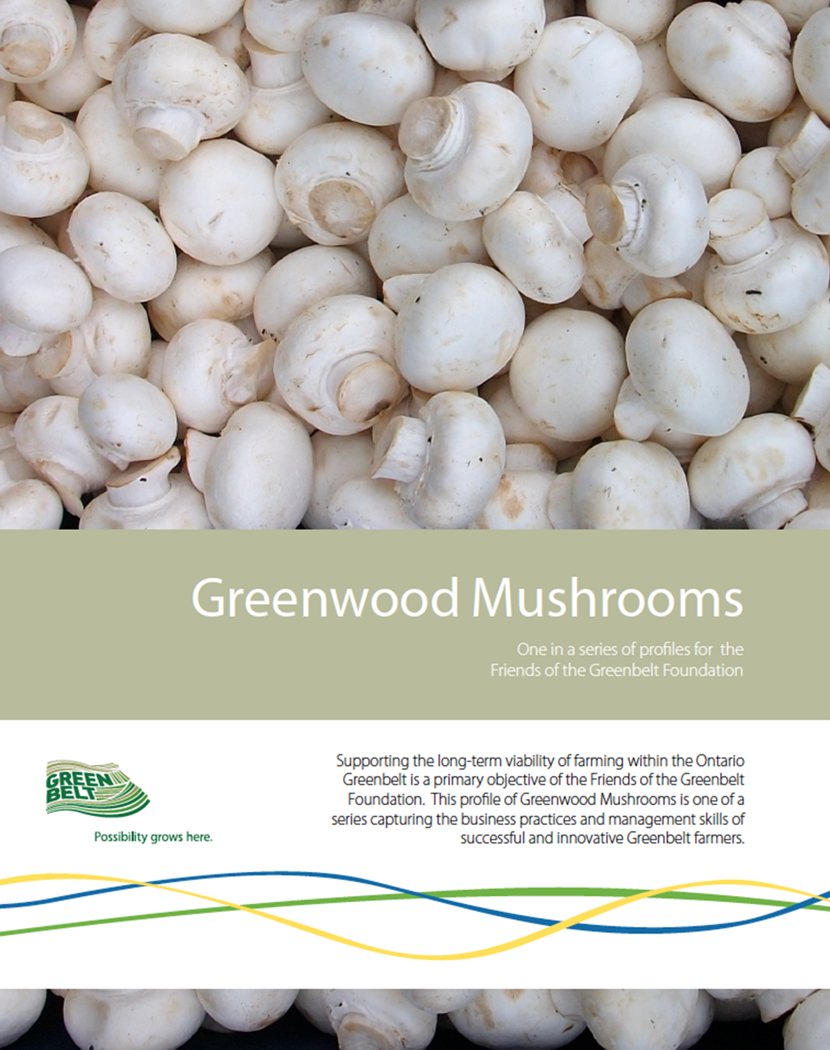 Greenbwood-Mushrooms-Cover.png