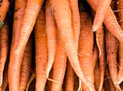 Photo - Carrots
