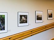 Photo - Photos on Display