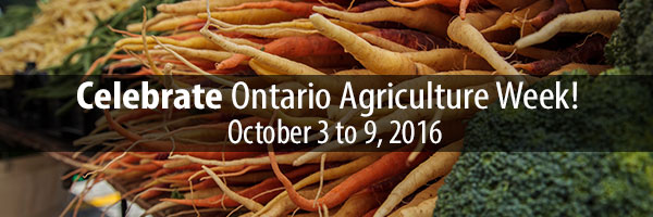 Photo – Ontario carrots and produce - Celebrate Ontario Agriculture Week!