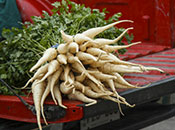 Photo - Parsnips