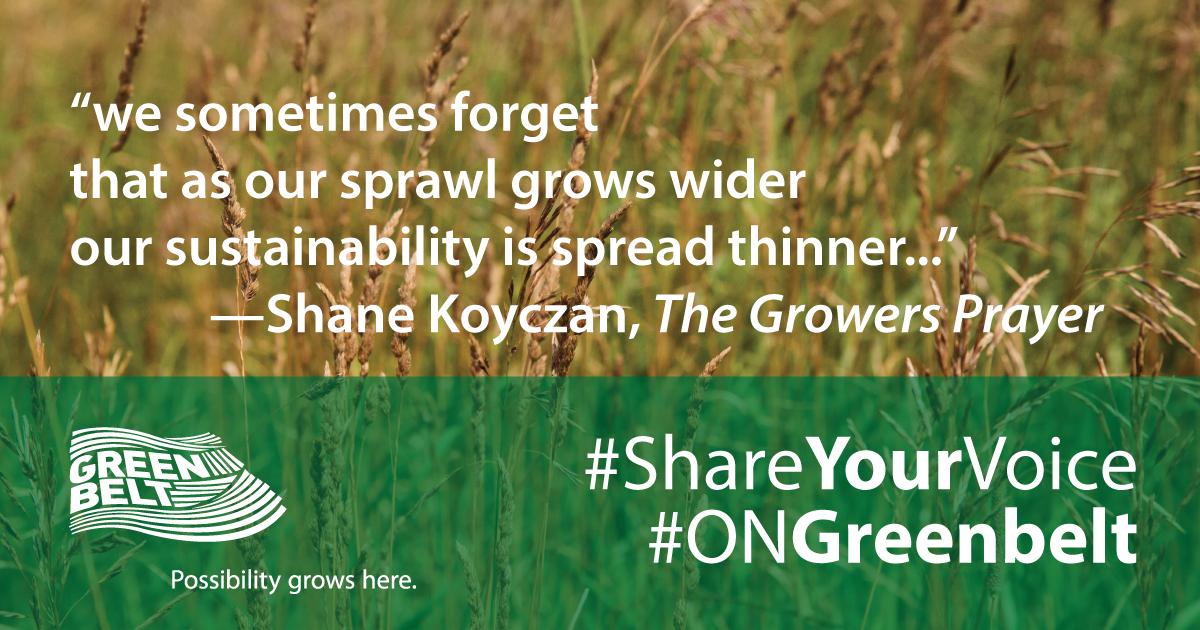 Shane Koyczan Poems 5