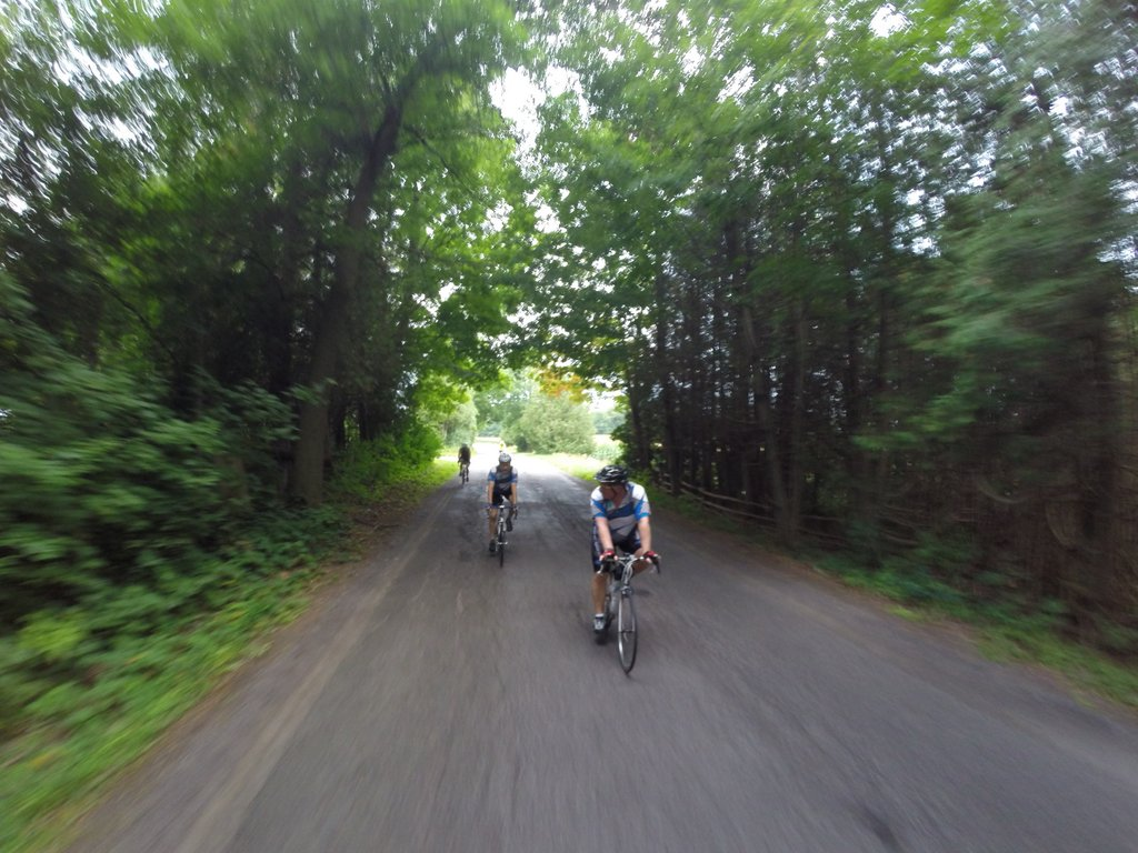 Photo-Biking-Fast-Trees-Credit_Bruce_Bellaire-GOPR2890.JPG