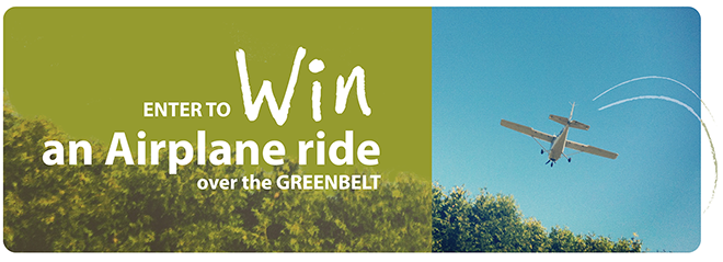 flythegreenbelt-banner-final-option2.png