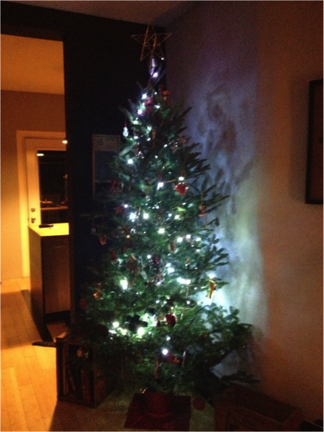 12.19.12_tree.png