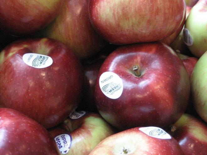 greenbelt_grown_apples_small.jpg