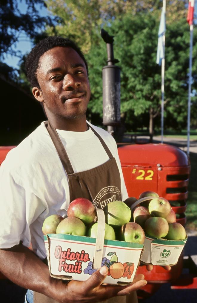 image_ontario_-_man_holding_apples.jpg