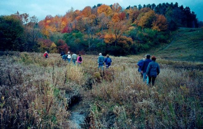 autumncolours_0_0.jpg