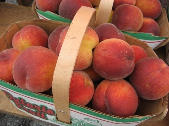 2011-08-18_2_baskets_of_ontario_peaches.jpg