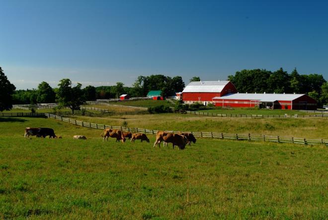 Greenbelt Farmers Realizing Significant Energy Savings