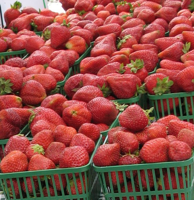 strawberries_cropped.jpg
