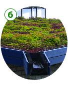 GI_Green_roof.jpg