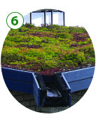 GI_Green_roof.jpg