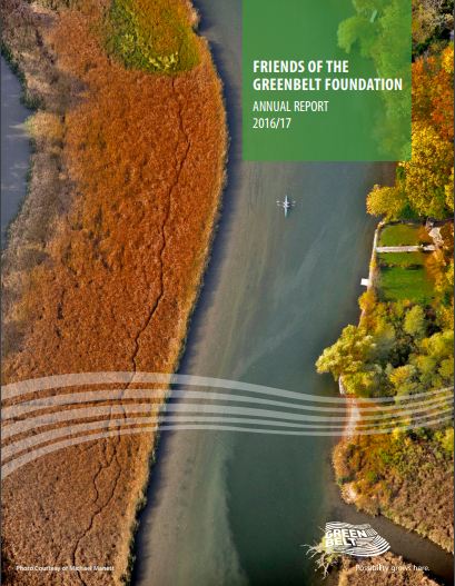 Foundation_Annual_Report_2016.17.png