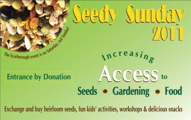 sowing-fun-at-seedy-sunday.jpeg