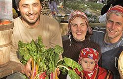 2010-12-21_plan_b_organics.jpg