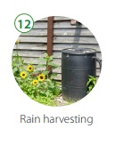 GI_Rain_harvesting.jpg
