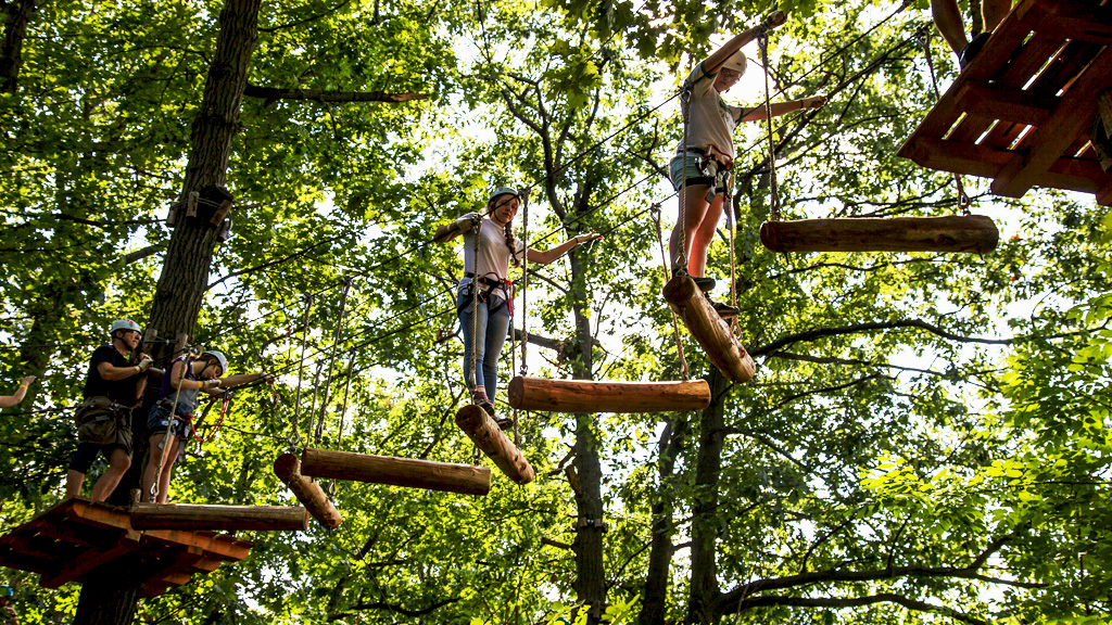 Tree-Top-Climbing-FB-Twitter.jpg