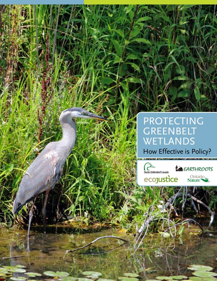 Nr6_Protecting_Greenbelt_Wetlands.jpg