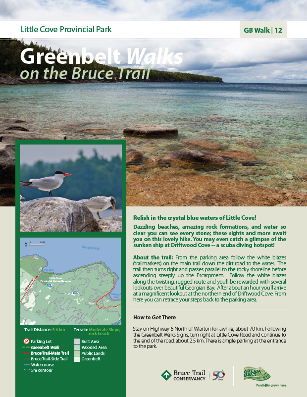 Walk_12_Little_Cove_Provincial_Park.png